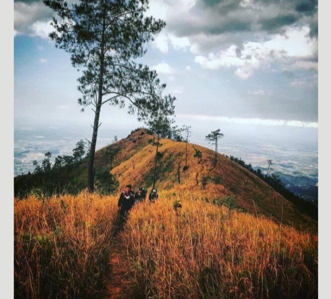 #Kamis Misteri: Mitos Gunung Wilis Yang Bikin Bulu Kuduk Merinding