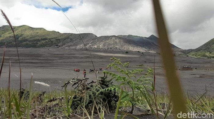 Para Pelaku Wisata Mendesak Kawasan Bromo Dibuka Kembali