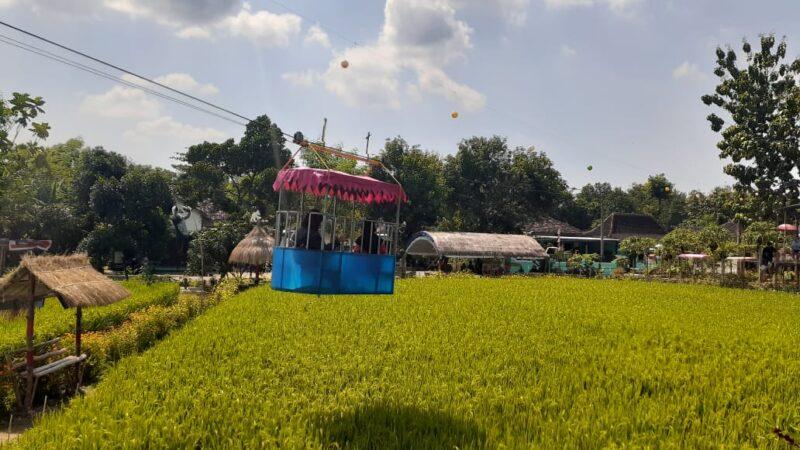 Bermodal Rp30 Juta, Dua Bersaudara di Madiun Ubah Sawah Jadi Taman Wisata
