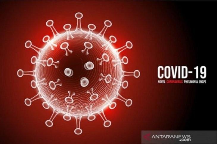 Update Covid-19 Pacitan! Bertambah 7 Orang, 5 di Antaranya Kasus Impor