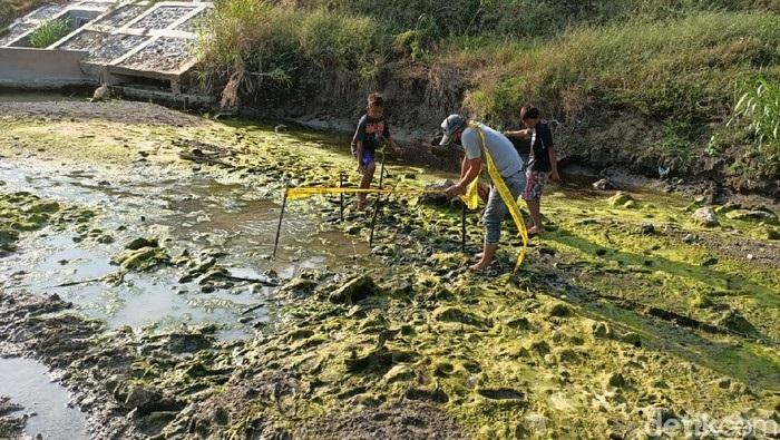 Ngeri! Cari Ikan, Anak-Anak di Lamongan Temukan Tengkorak Manusia