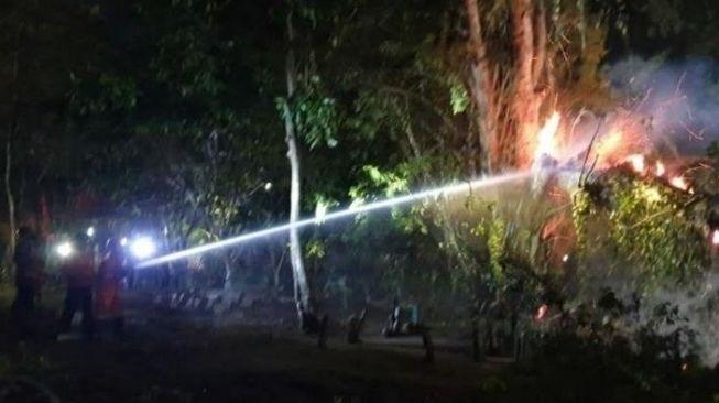 Seram! Pohon Tua Kuburan Morosemo di Tuban Tiba-tiba Terbakar