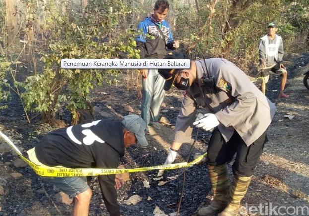 Hii…Ada Kerangka Manusia Terbungkus Plastik di Hutan Baluran yang Terbakar