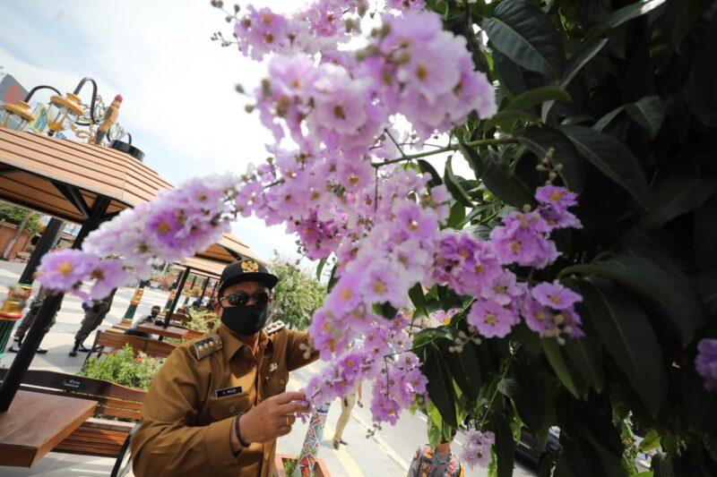 Kota Madiun Lagi Cantik-Cantiknya, Bunga Bermekaran di Semua Sudut Kota