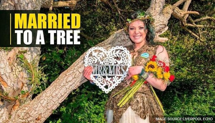 Wah...Pohon Tua Ini jadi Suami Ibu Dua Anak Di Inggris