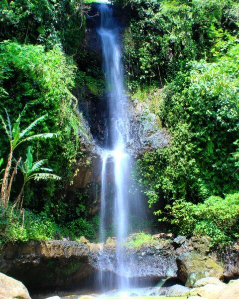 Menyegarkan, Rekomendasi Wisata Air Terjun di Madiun Ini Bisa Jadi Pilihan Saat Kamu Bosan