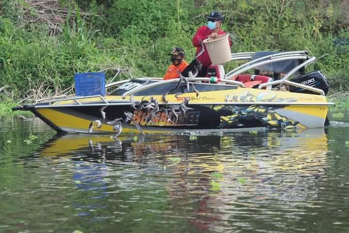 Mantap! 2 Kuintal Ikan Lele Disebar di Bengawan Madiun