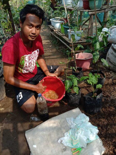 Inspiratif! Pemuda Madiun Ini Manfaatkan Sampah Popok untuk Media Tanam dan Pupuk
