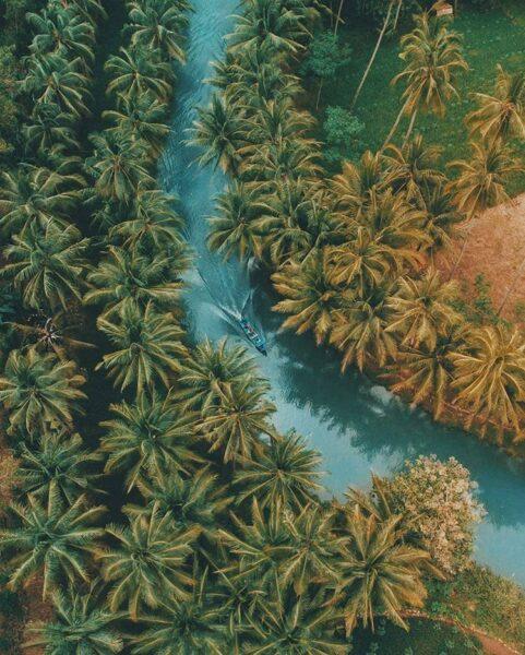 Disebut Mirip Sungai Amazon, Seperti Inilah Potret Sungai Maron di Pacitan