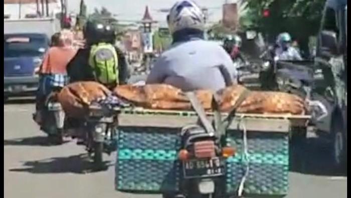 Viral Video Jenazah Ditaruh di Bronjong Sepeda Motor
