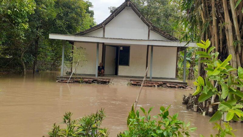 Air dari Gunung Wilis Meluap, 37 Rumah dan 50 Hektare Sawah di Madiun Tergenang