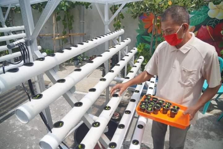 Warga Kanigoro Madiun Dilatih Bertanam Hidroponik untuk Ketahanan Pangan