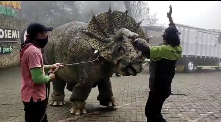 Viral! Video Dinosaurus Diturunkan dari Truk, Ternyata di Magetan