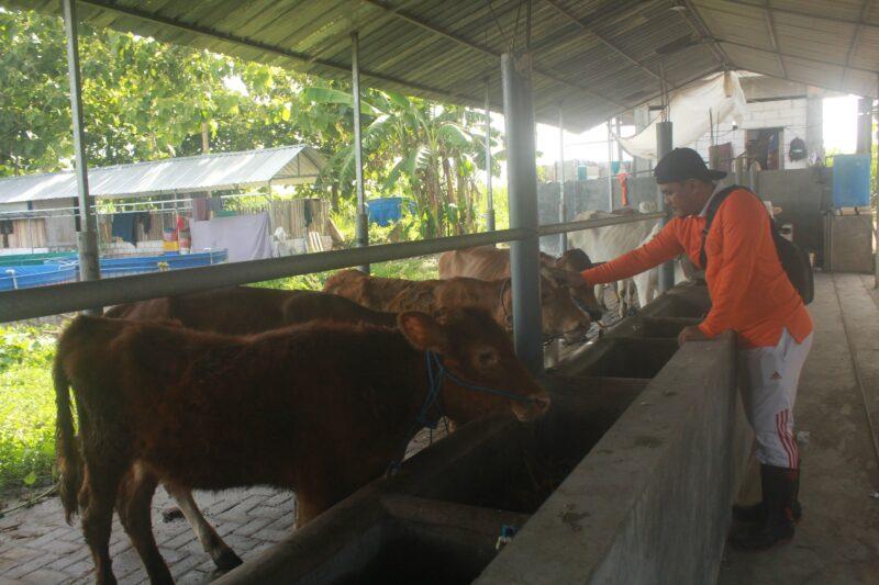 Kelompok Santri Tani Milenial, Upaya Regenerasi Petani di Jombang (Bagian III/Habis)