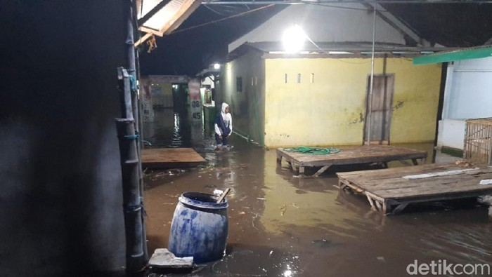 Banjir Rob Rendam Puluhan Rumah di Pesisir Situbondo