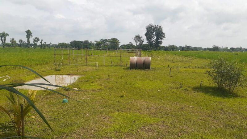 Bupati Madiun Tolak Pendirian Pasar Muamalah di Daerahnya