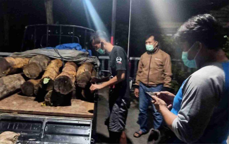 Tutupi Kayu Curian dengan Sekam, Polisi Tangkap Pelaku Pembalakan Liar di Ponorogo