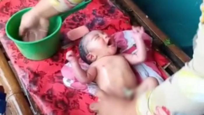 Dibungkus Daun Pare, Bayi Dibuang di Ladang Tebu