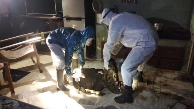 Sebatang Kara, Warga Banyuwangi Ditemukan Membusuk di Kamar Mandi