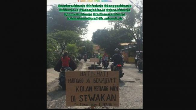 """Protes Pemkab Sidoarjo, Jalan Berlubang """"Disewakan Buat Ternak Cupang"""""""