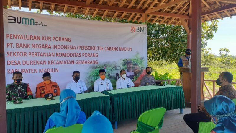 Tak Terdampak Pandemi, BNI Madiun Sediakan KUR Rp50 Miliar untuk Petani Porang