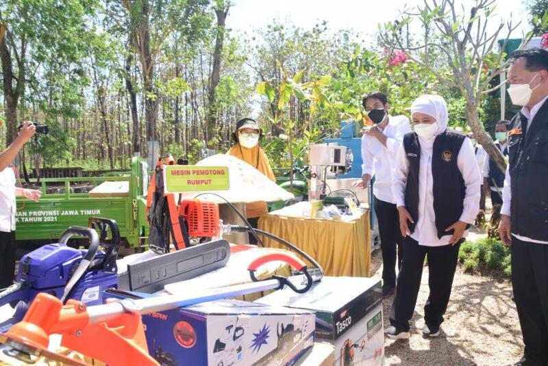 Khofifah Beri Bantuan Alat Ekonomi Produktif kepada Petani Hutan di Madiun